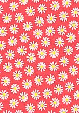 Cadeaupapier 30cm K601837/4-30 daisy neon 30cm