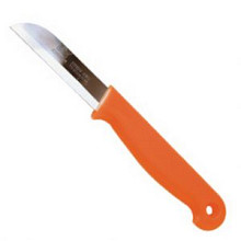 Schilmesje oranje + gat 10 stuks