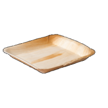 Biodore® Bord palmblad rechthoekig 24x24cm 25 stuks