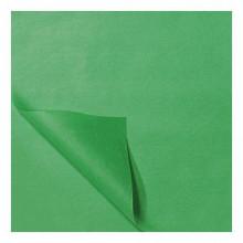 Zijdevloei papier 50x75cm 22gr 100 vel Licht Groen