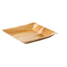 Biodore® Bord palmblad rechthoekig 18x18cm 25 stuks
