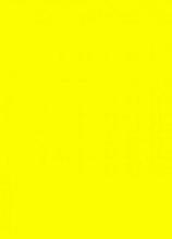 Prijskaart  6x8cm 100st. fluor geel