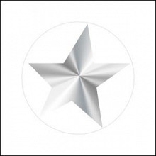 Etiket / Sticker ster transparant - zilver 500 stuks