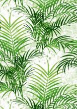 Cadeaupapier 50cm K601835-1 PALM SPRINGS GREEN