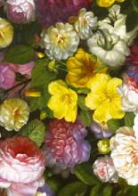 Cadeaupapier 50cm K601836 BAROQUE FLOWER