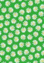 Cadeaupapier 50cm K601837-2 DAISY GREEN