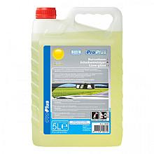 Ruitenvloeistof ProPlus zomer kant en klaar 5l