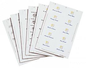 Badgekaart Durable 1453 bedrukbaar 40x75mm 240stuks